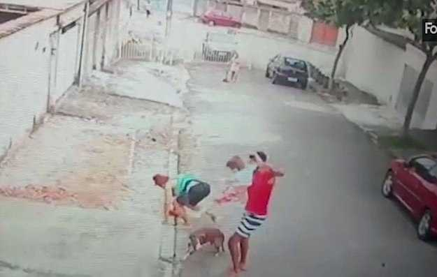 the-young-man-who-rescued-the-boy-from-the-dog